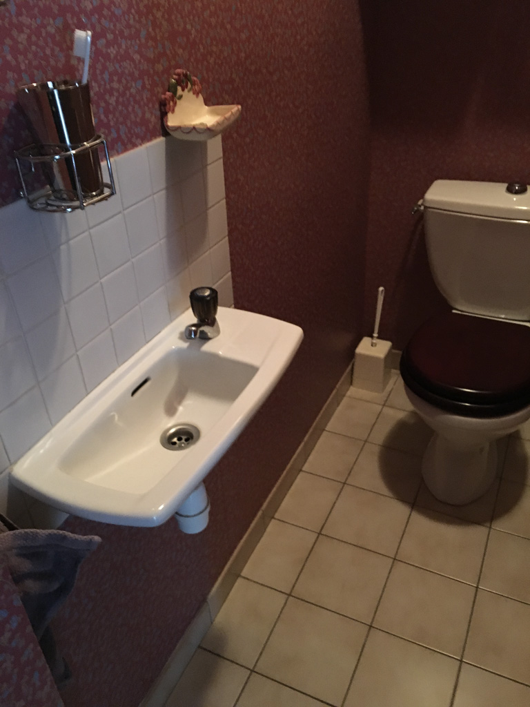 Renovation-toilettes-afc-15