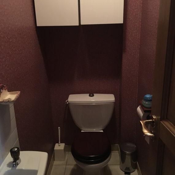 Renovation-toilettes-afc-16