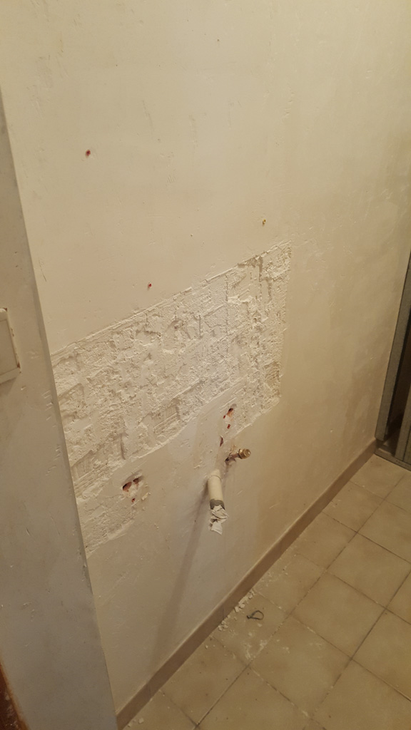 Renovation-toilettes-afc-3