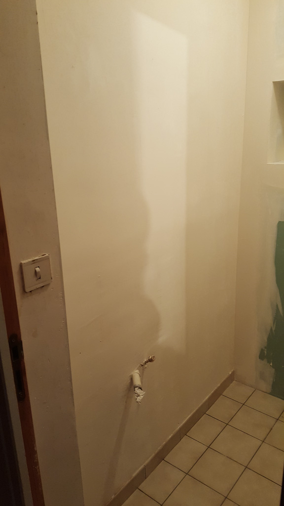 Renovation-toilettes-afc-9
